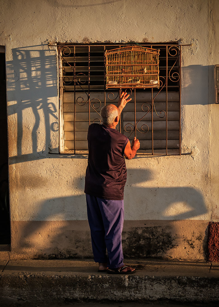Birdman, Trinidad, Cuba