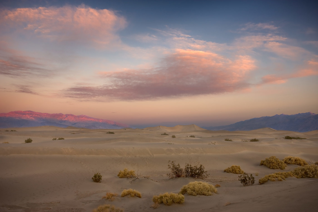 Pink Morning over Dunes