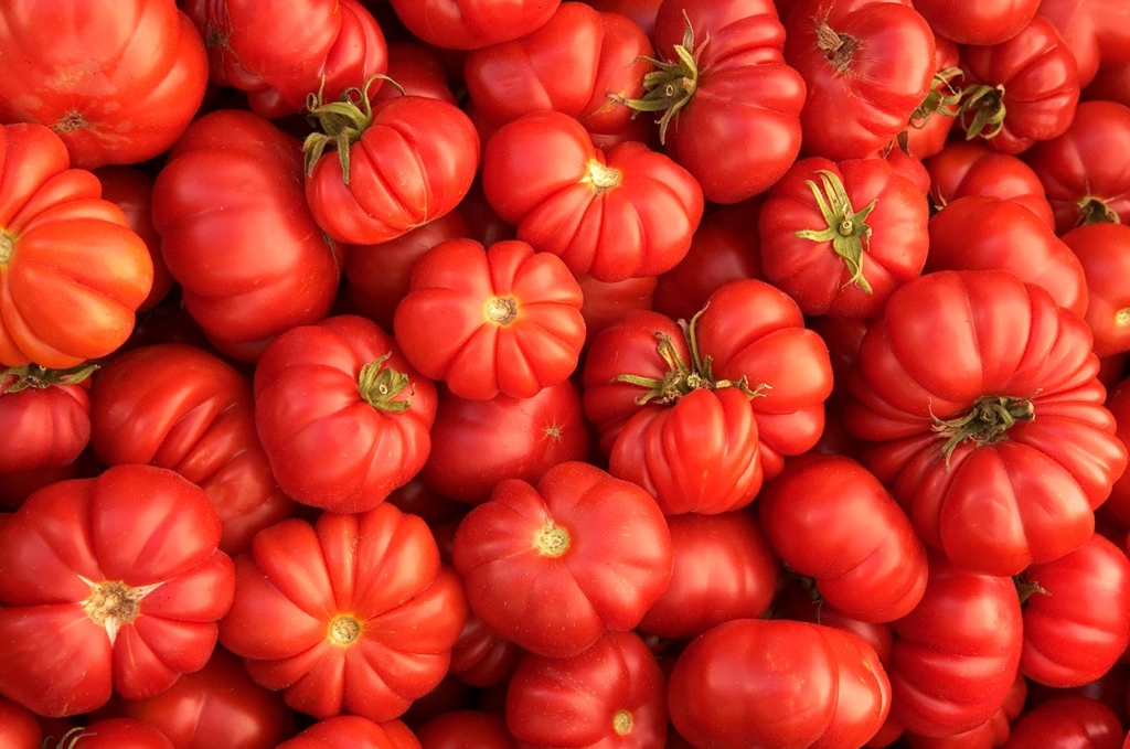 Tomatoes, Farmers Market