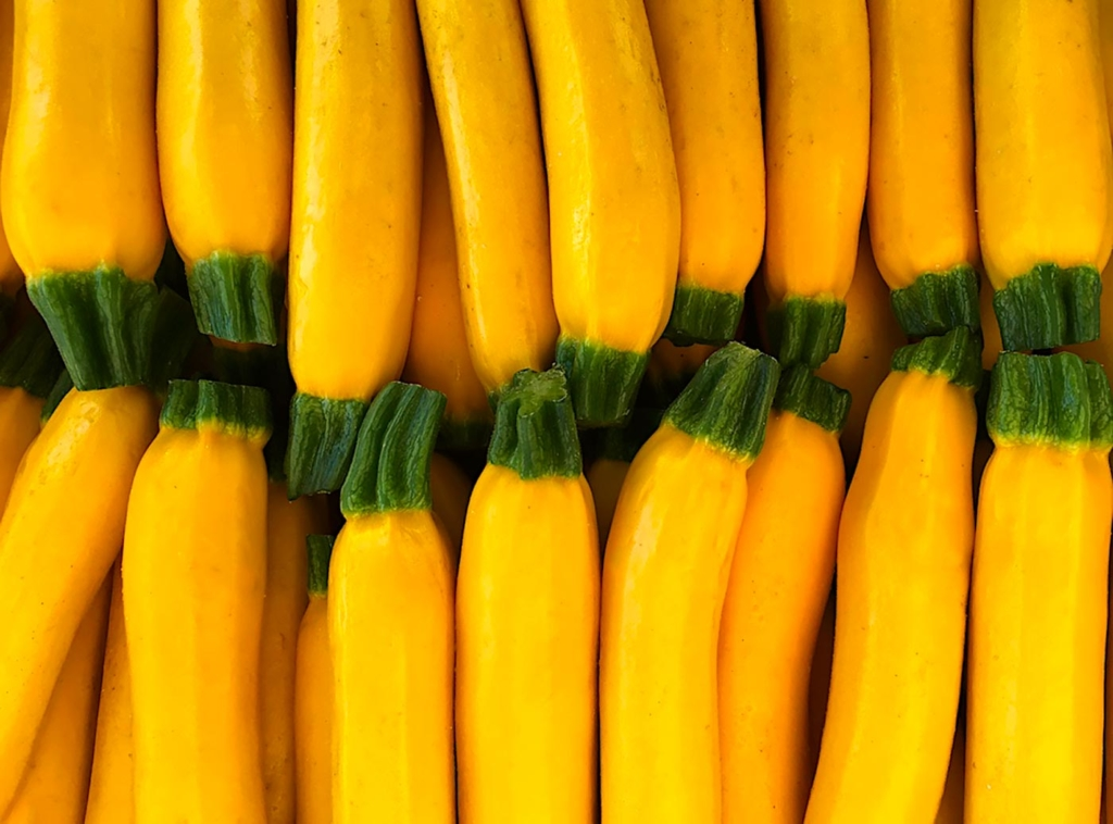 Zucchini, Farmers Market