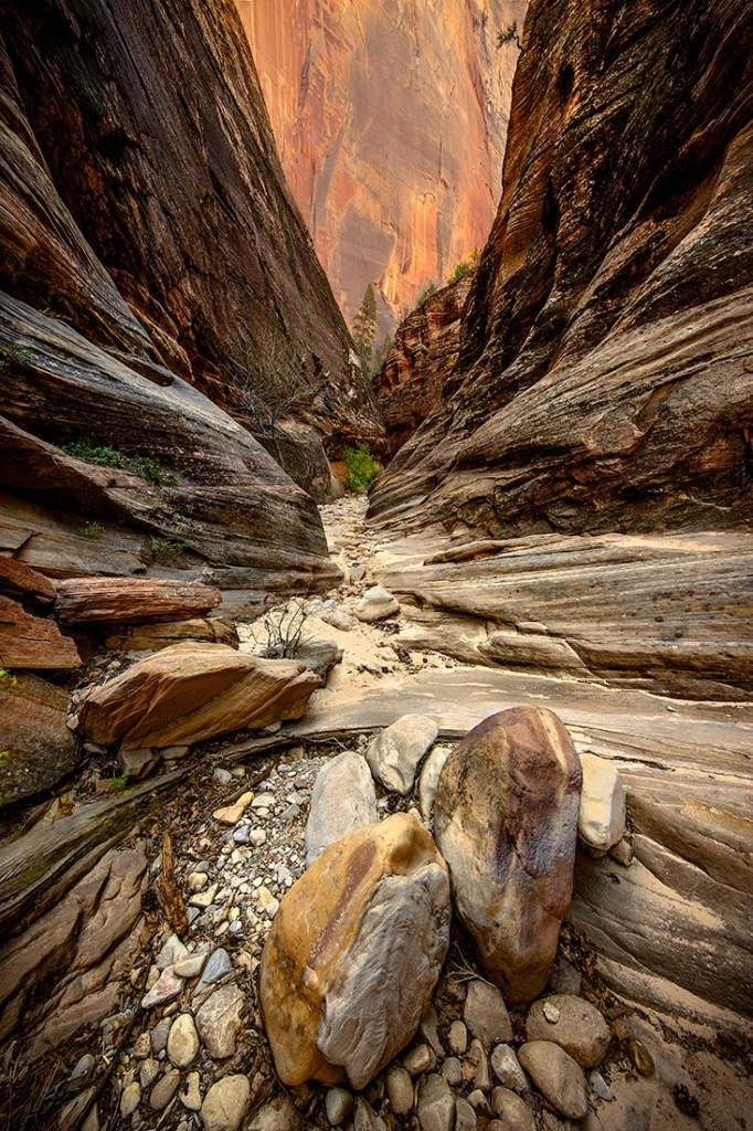 Echo Canyon, Zion NP, Utah