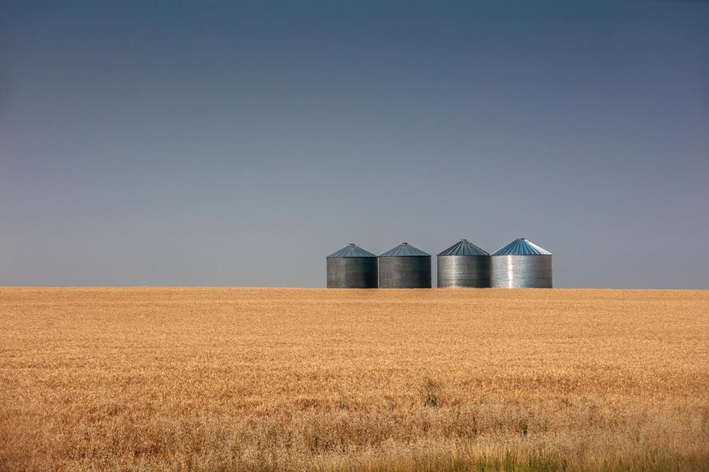 Tanks, Montana