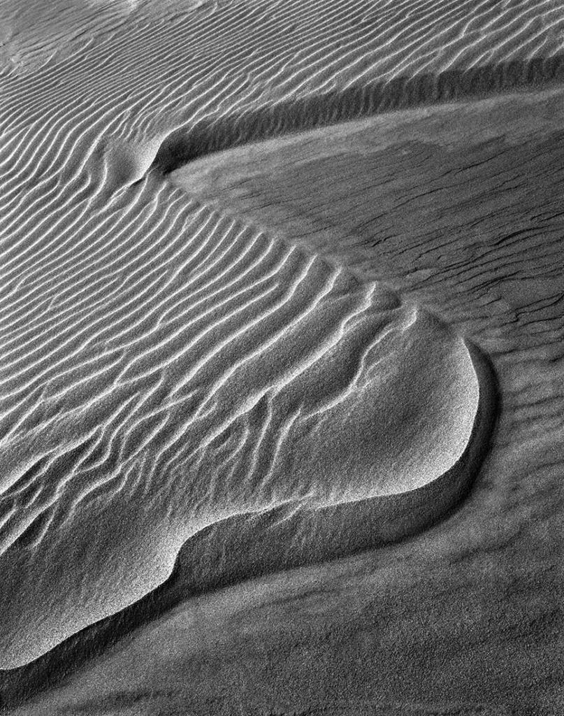 Pismo Beach Dune